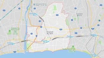 Professional wrestler arrested in Japan for slamming man over parking spot: report