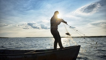 Fisherman, shark have 'tug of war' with fishing net
