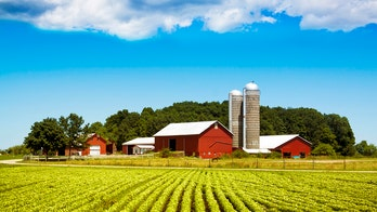 Perdue Farms chair claims COVID-19 prevention protocols are working, doesn't expect more plant closures