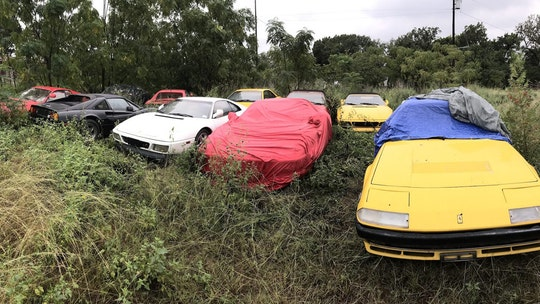 Family inherits field of forgotten Ferraris
