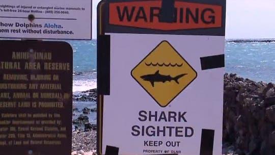 Woman sees shark lurking several feet away from South Carolina beach goers
