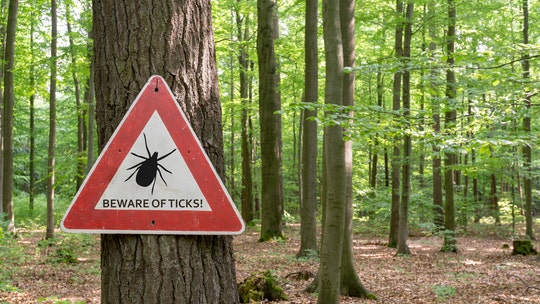 Colorado girl, 7, diagnosed with rare tick paralysis after overnight camp
