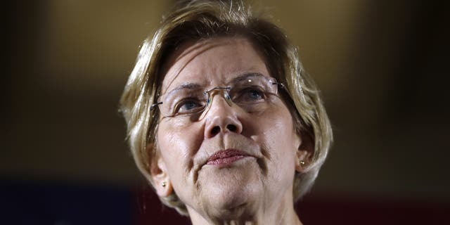 2020 Democratic presidential claimant Sen. Elizabeth Warren has called for a dissection of tech giants like Amazon and Facebook. (AP Photo/Charlie Neibergall)