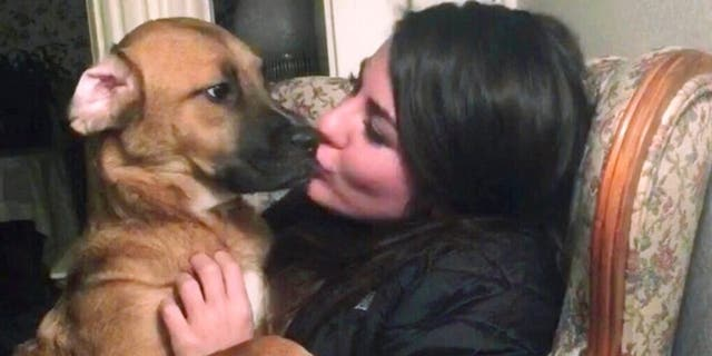 """Jessica Sardina is fighting for custody of a dog named Honey, pictured here, that she shared with her ex-boyfriend.<br data-cke-eol=""""1"""">"""
