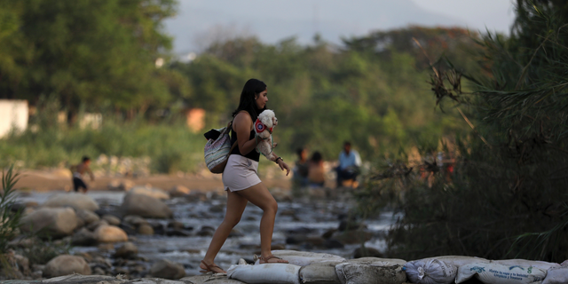 A woman holding her pet crosses illegally into Colombia near the Simon Bolivar International Bridge in La Parada near Cucuta, Colombia, Wednesday, May 1, 2019, on the border with Venezuela. The border area near Cucuta was peaceful Wednesday, even as Venezuelans heeded opposition leader Juan Guaidó's call to fill streets around the nation but security forces showed no sign of backing his cry for a widespread military uprising, instead dispersing crowds with tear gas as the political crisis threatened to deepen. (AP Photo/Fernando Vergara)