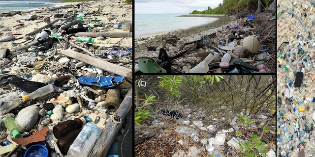 Marine biologist Jennifer Lavers published a study Thursday about plastic debris she and her colleagues found on seven of the Cocos Keeling Islands in 2017. Pictured: (A) eastern side of South Island, (B) north side of Direction Island, (C) beach-back vegetation along the north-east side of Home Island, (D) micro-plastics along the eastern side of South Island.<br>