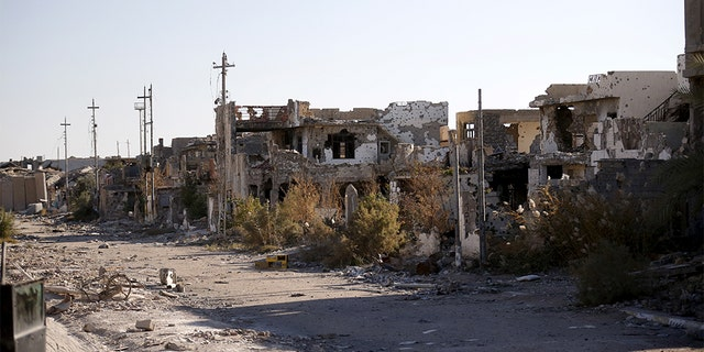 Destroyed buildings are seen in the city of Ramadi, January 16, 2016. Baghdad and Washington have touted Ramadi as the first major success for Iraq's U.S.-backed army since it collapsed in the face of the Islamic State's lightning advance across the country's north and west in mid-2014.  Picture taken January 16, 2016. REUTERS/Thaier Al-Sudani - GF20000098966