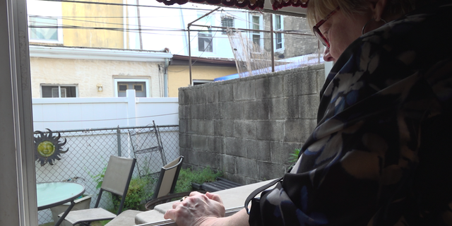"Jean Van Sciver, a colony ""caretaker"" feeds her feral cats through her window."