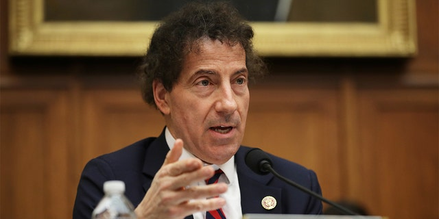 Rep. Jamie Raskin, D-Md., questions witnesses during a hearing of the House Judiciary Committee's Antitrust, Commercial and Administrative Law Subcommittee in the Rayburn House Office Building on Capitol Hill March 12, 2019, in Washington, D.C. (Photo by Chip Somodevilla/Getty Images)