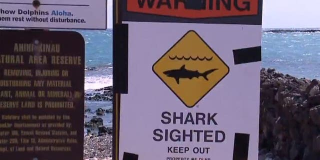 Shark warning signs were posted in the Ka'anapali Beach Park area on Maui after a man was killed in an apparent shark attack on Saturday.