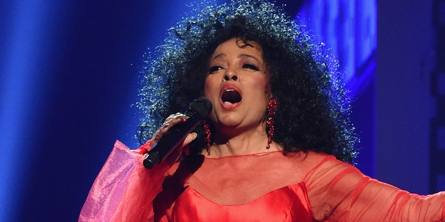 "Diana Ross, seen here performing at the Grammys, lashed out after she felt ""violated"" by the TSA."