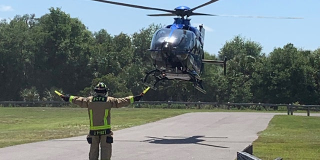 """A woman had to be airlifted after sustaining """"significant bite injuries"""" in an alligator attack in Florida on Saturday, according to officials."""