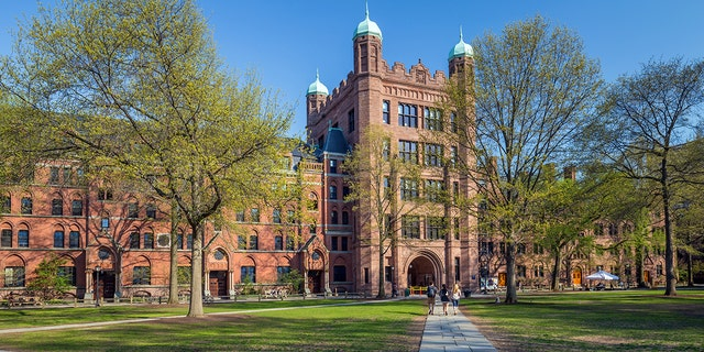 Westlake Legal Group iStock-Yale What are the hardest colleges to get into? Morgan Phillips fox-news/us/education/college fox-news/us/education fox news fnc/us fnc e639ed78-5412-5196-aa08-73f5a1952fb6 article