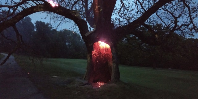 Glowing embers can be seen on a tree that apparently had been struck by lighting in Millbury, Mass. on Sunday.