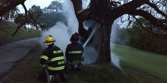 Firefighters douse a smoldering tree after a lightning strike on Sunday.