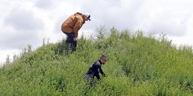 "Searchers looking for signs of Elizabeth ""Lizzy"" Shelley on Tuesday in Logan, Utah."