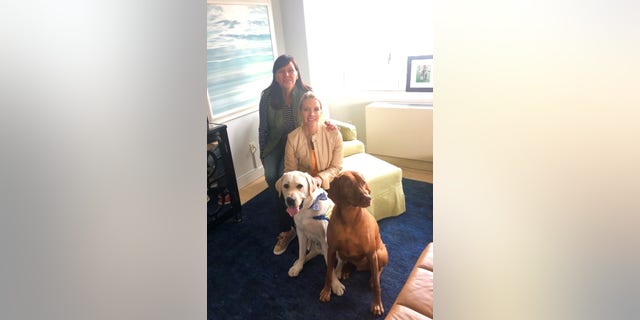 Dana Perino, the world's biggest dog lover and anchor of The Daily Briefing, has generously offered several times before to take Spike when something comes up. I must admit I was hesitant when Spike was younger, because she didn't know the program. But also because Jasper, Perino's dog, has VERY different rules from Spike.
