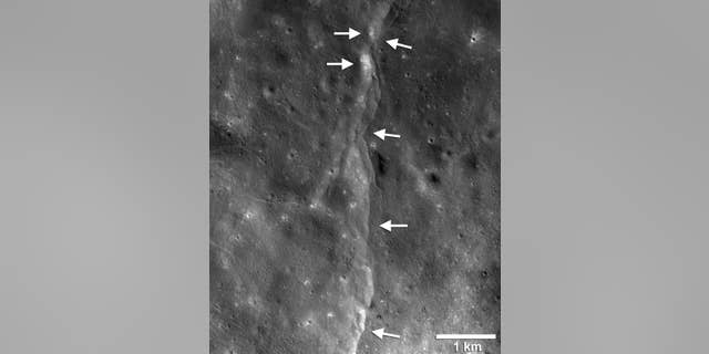 This prominent thrust fault is one of thousands discovered on the moon by NASA's Lunar Reconnaissance Orbiter. These faults, called scarps, resemble small stair-shaped cliffs when seen from the lunar surface. The scarps form when one section of the moon's crust (left-pointing arrows) is pushed up over an adjacent section (right-pointing arrows) as the moon's interior cools and shrinks. New research suggests that these faults may still be active.