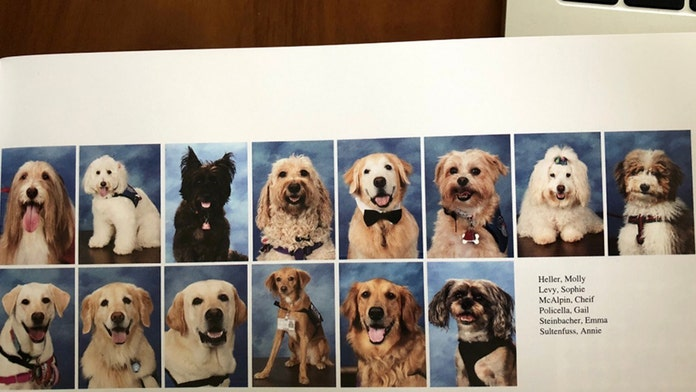 Parkland's Stoneman Douglas therapy dogs featured in yearbook