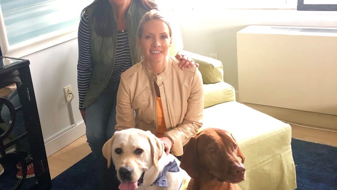 The Daily Spike: The do's and dont's for leaving your dog with a pet sitter