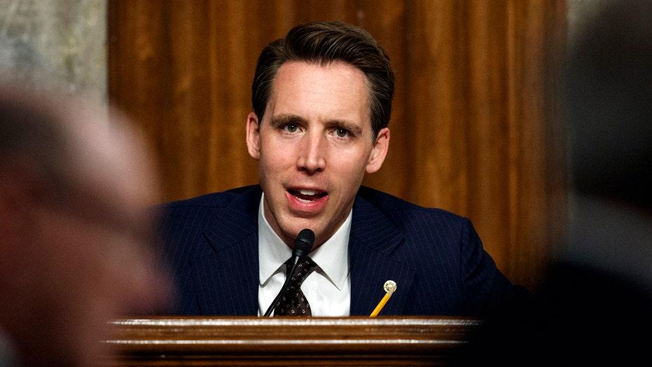 Sen. Josh Hawley on whether private equity companies deserve coronavirus relief