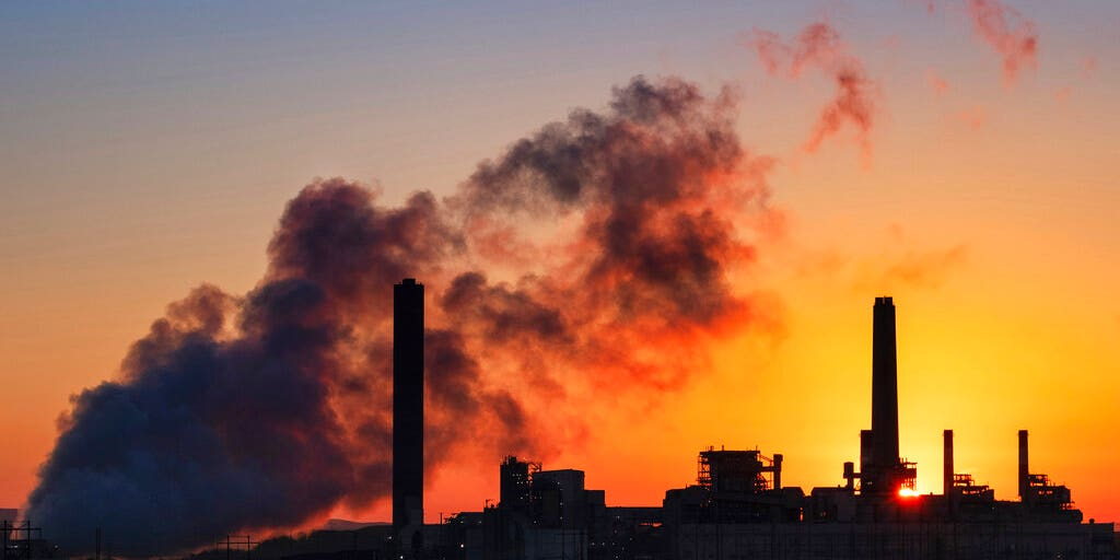Medical groups call climate change a 'health emergency' ahead of Democratic debate