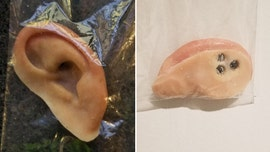 Prosthetic ear found on Florida beach prompts police search