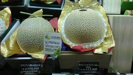 Two melons sold at Japanese auction for $45G to first-time bidder: report