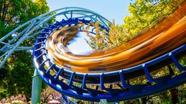 'Firebird' roller coaster jams at Six Flags park near DC; all passengers escorted to safety