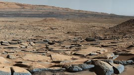 How Martian microbes could survive in the salty puddles of the Red Planet