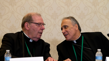 Catholic bishops vote to create new sex-abuse reporting hotline