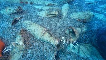 'Undisturbed' Roman-era shipwreck discovered off Cyprus