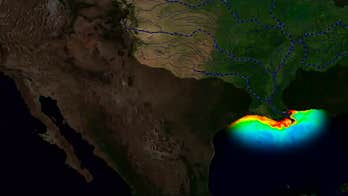 Gulf of Mexico 'dead zone' could reach a near-record level this summer, scientists warn