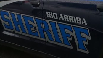 New Mexico sheriff officer allegedly 'jokingly' tased his co-worker in the groin: reports