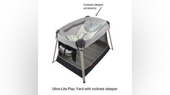Fisher-Price recalls 71,000 inclined infant sleeper accessories