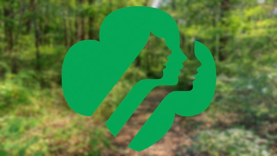 Girl Scout dead, three more injured, after tree topples over at Indiana camp site