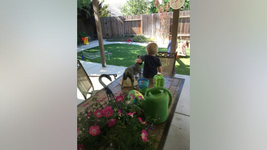 Suzanne Hadley Gosselin: When my kids rescued a stray dog, I learned an important lesson