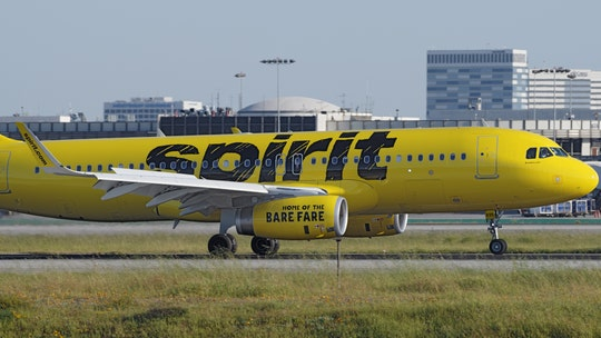 Spirit Airlines passenger claims man sitting next to her 'slid his hand' down her pants, 'pleasured' himself