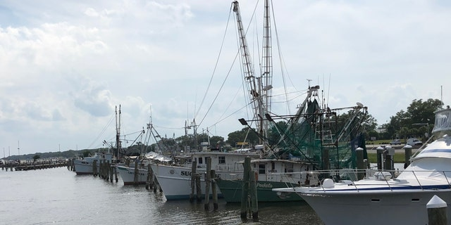 Commercial fishing boats sit in the Pass Christian Harbor in the Mississippi Gulf Coast after fresh water inundated the Mississippi sound and forced marine life to water where they can survive. (Fox News/ Charles Watson)