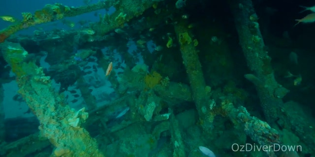 The Nyora wreck was discovered off the coast of South Australia. (ScubaCrave/OzDiverDown)