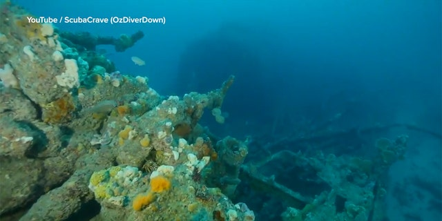The Nyora wreck has been discovered almost 102 years after the steam tug sank in a storm.