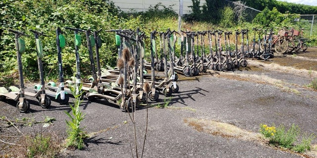 The Multnomah County Sheriff's Office's recently hauled out 57 electric scooters and bicycles over a two-day period in the Willamette River in Portland.