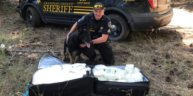 Sgt. Gene Davis and K-9 Gunner, pictured here, found two suitcases full of methamphetamine in the Okanogan National Forest on Monday, officials said.