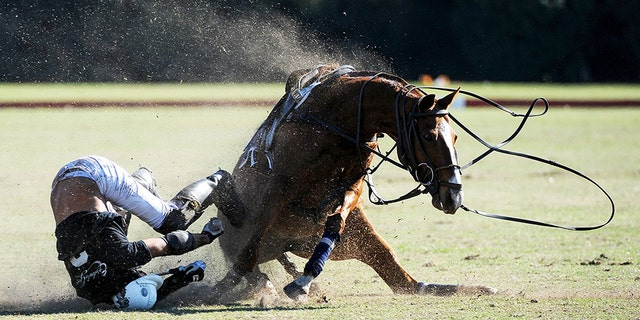 Federico Rooney was thrown from his horse during a match in Argentina on Sunday.