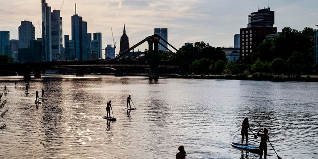 Stand up paddle boarders explore the river Main in Frankfurt, Germany, on a warm and sunny Monday evening, June 24, 2019.
