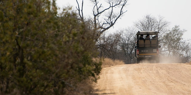A tourist group in a Jeep on safari at Kruger National Park