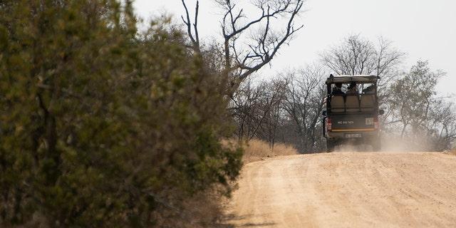 یک گروه گردشگری در یک جیپ در سافاری در پارک ملی Kruger