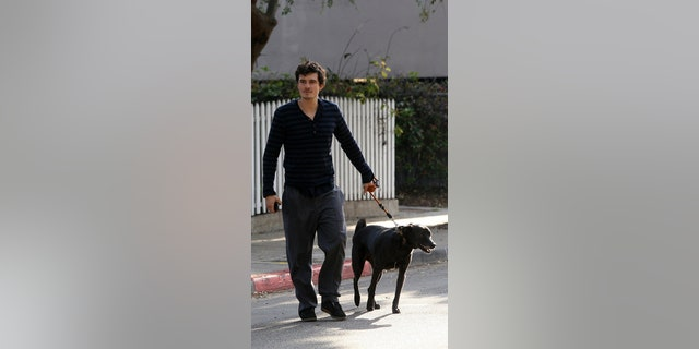 Westlake Legal Group orlando-bloom-dog-Getty Orlando Bloom had his dog's skeleton mounted at home The Sun fox-news/entertainment/genres/pets fox-news/entertainment/celebrity-news fox-news/entertainment fnc/entertainment fnc Becky Waldren be41e087-c9d7-5b06-a0a6-7c9ec732b2bc article