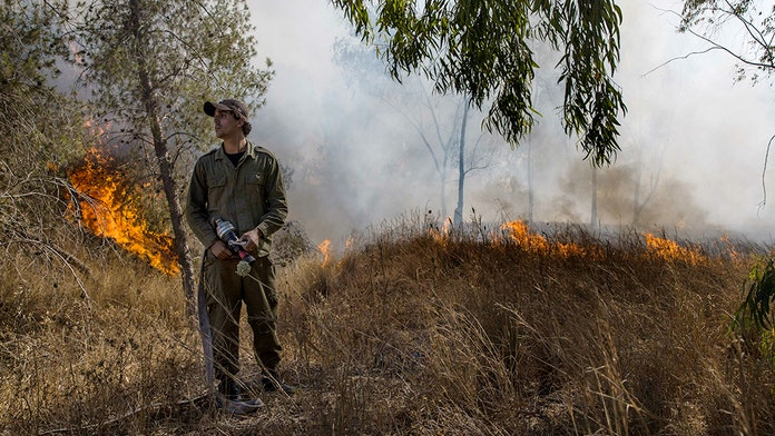 Gaza 'balloon bombs' spark 19 fires in southern Israel: report