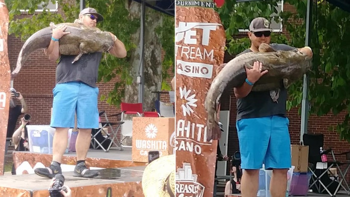 Man catches massive 85 lb catfish with his bare hands